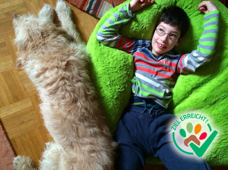 Gefährten mit Spürsinn – Therapiehundestunden für Ricky