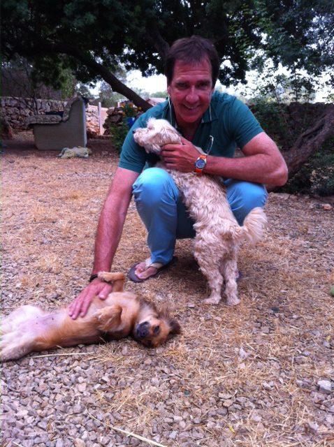 Ein großes Herz für Straßenhunde.