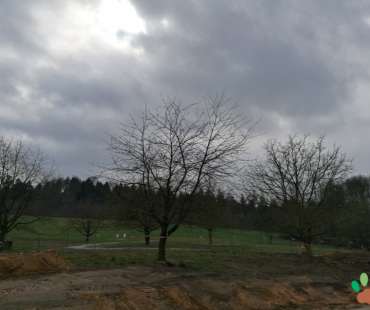 Dorf Sentana, Baustelle