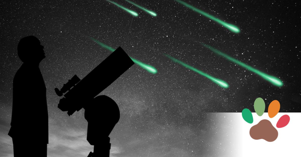 Diese astronomischen Ereignisse begegnen Ihnen dieses Jahr.