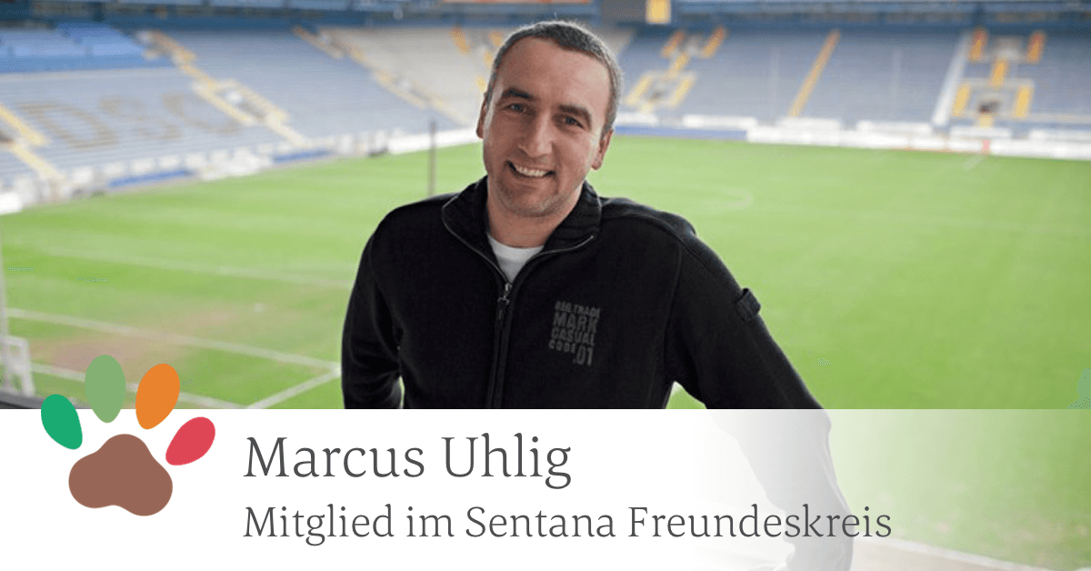 Dieses Bild zeigt Marcus Uhlig in privater Kleidung auf der Tribüne eines Fußballstadion mit Spielfeld im Hintergrund