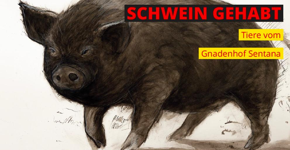 """Vernissage """"Schwein gehabt"""""""