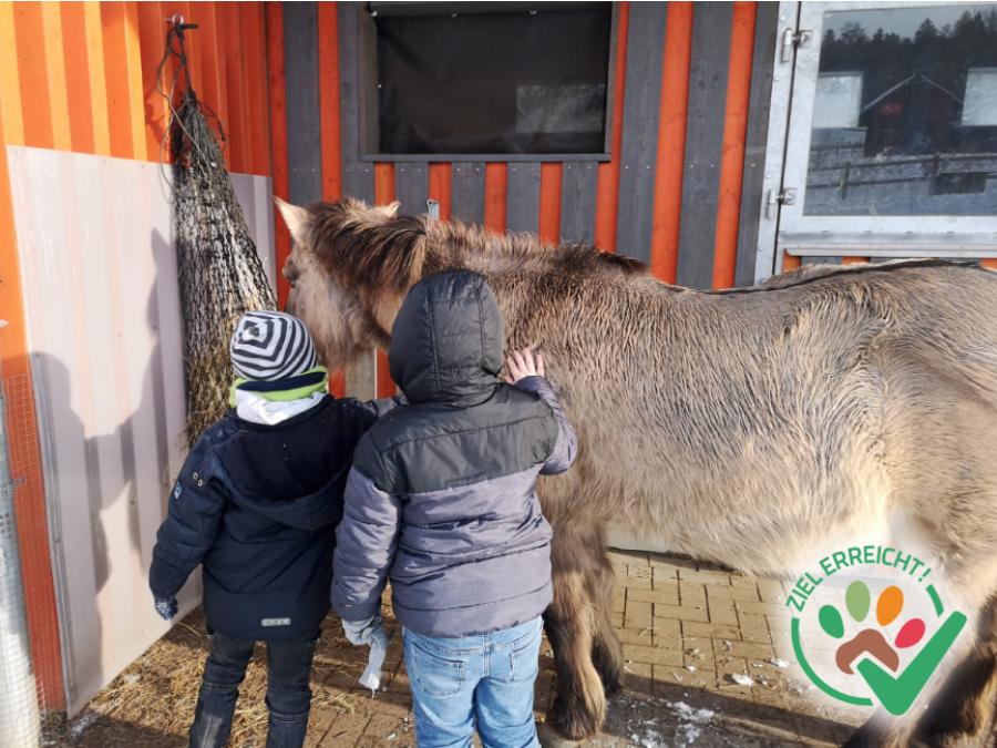 Tiergestützte Pädagogik für die Hamfeldschule