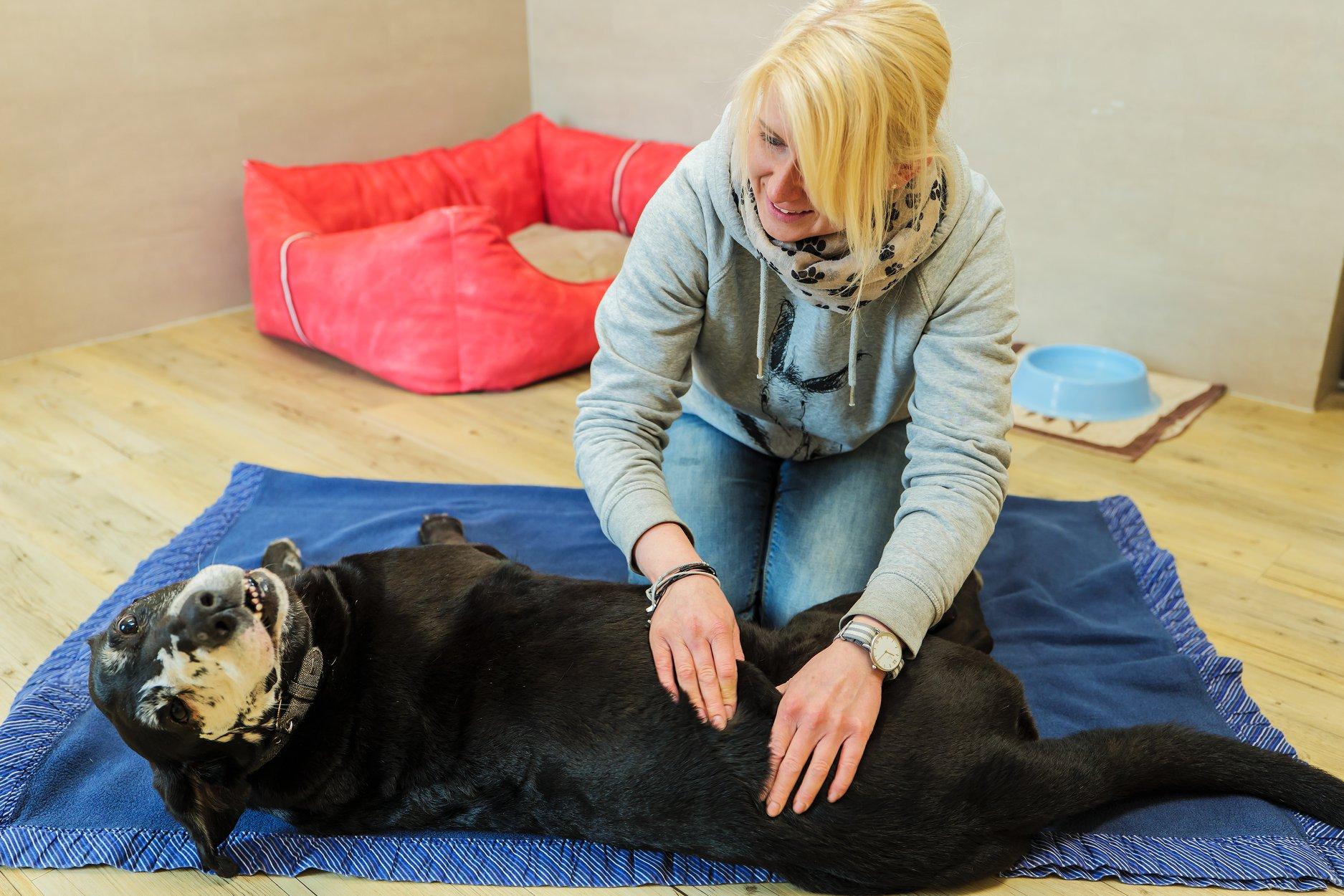 Physiotherapie für Nicky und Sina