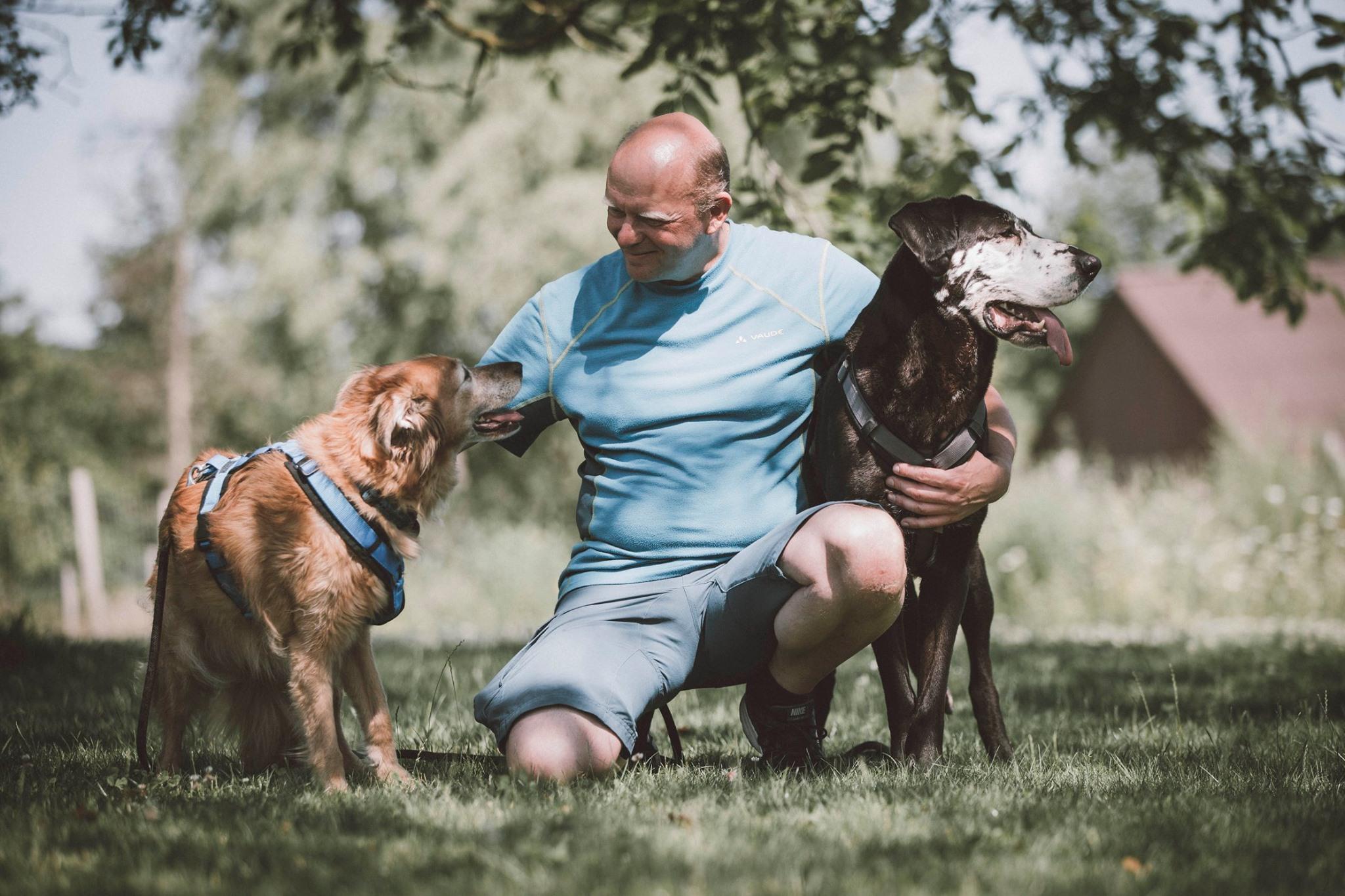 Liebevolle Begleitung unserer Hundesenioren